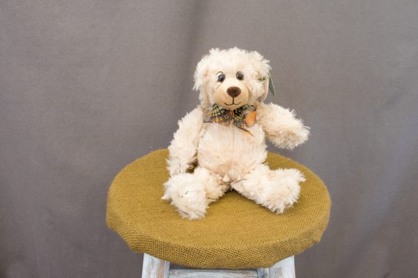 Scraggles the Bear - $9.00