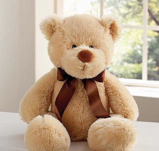 Super Soft Cuddly Bear